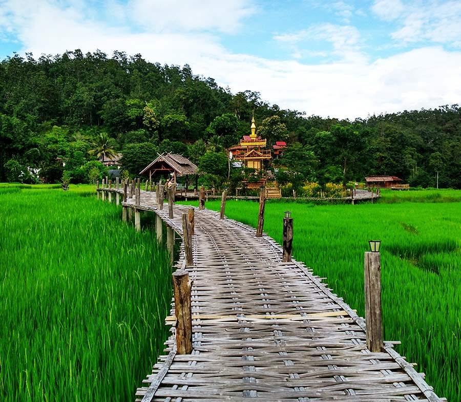 Cầu tre Bamboo Bridge Pai Thái Lan