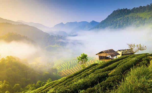 Du lịch Chiang Mai nên đi khi nào?