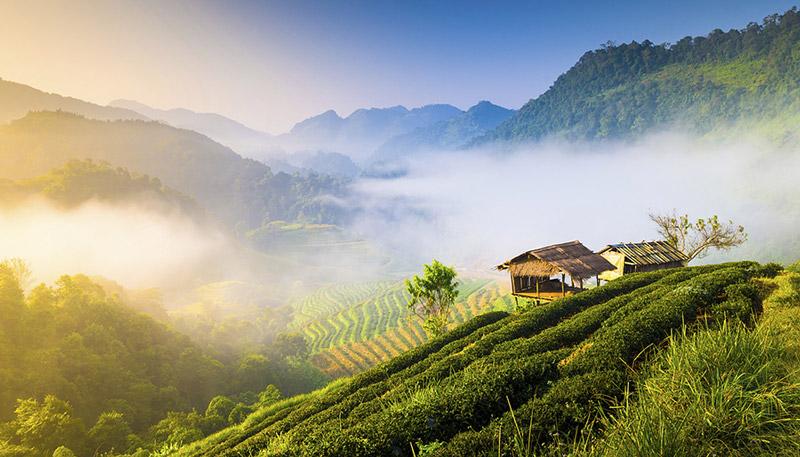 Những điểm đến hấp dẫn ở Thái Lan: Chiang Mai