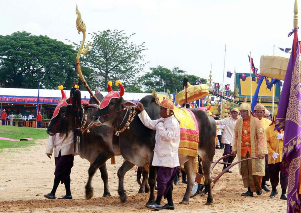 Lễ hội Campuchia: Lễ cầm cày Hoàng Gia (Pithi Chrat Preah Neang Korl)