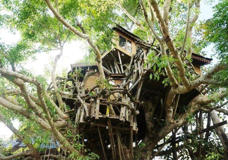 Pai Tree House: gôi nhà trên cây