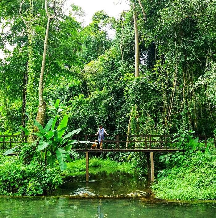 Trải nghiệm ở Pai: Tắm suối nước nóng Hot Spring