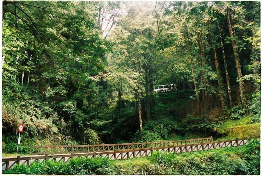 Cung đường tuyệt đẹp ở Alishan