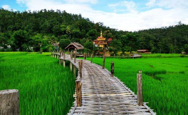 Từ Chiang Mai đi Pai nên chọn phương tiện gì?