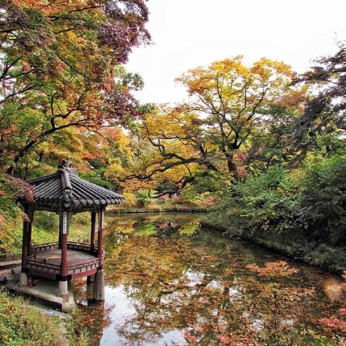 Vườn thượng uyển cung Changdeok